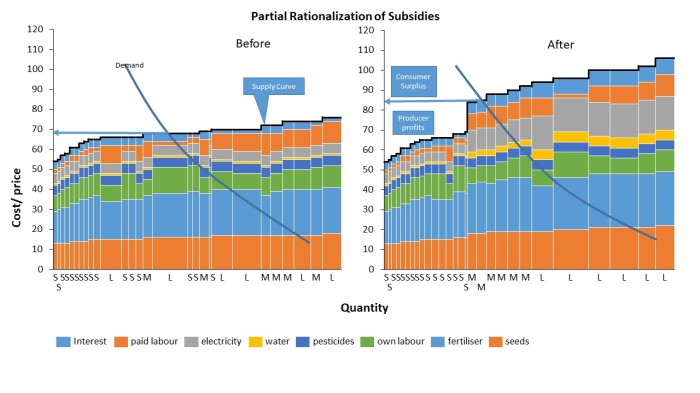 Rationalization of Subsidies